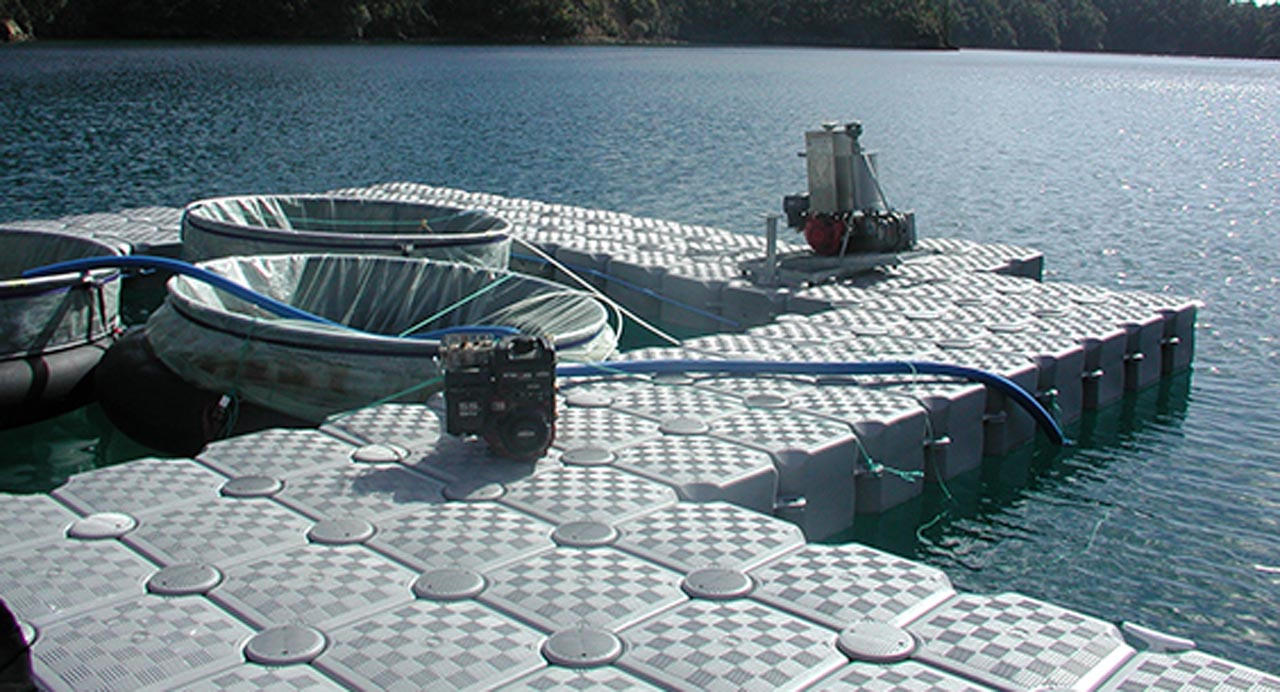 Aquaculture uses for the dockpro 1